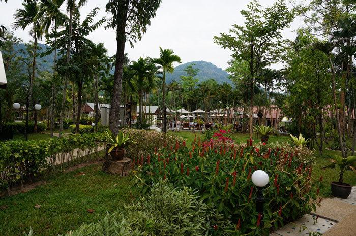 Йога-тур в Таиланд 2013