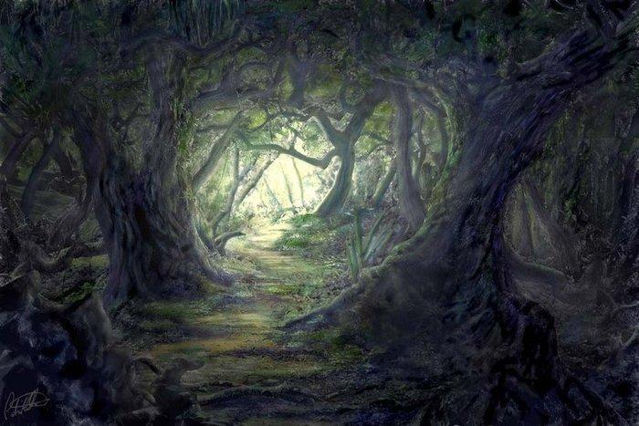 Картинки по запросу Темный лес с разбойниками